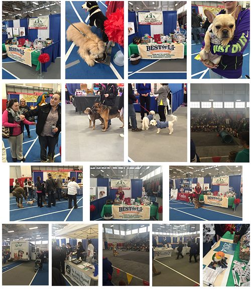 LI Pet Expo at Suffolk Community College