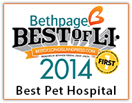 Voted Best Pet Hospital