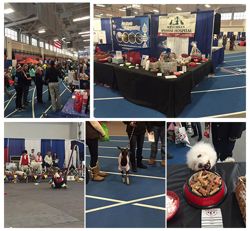 LI Pet Expo - Suffolk Community College