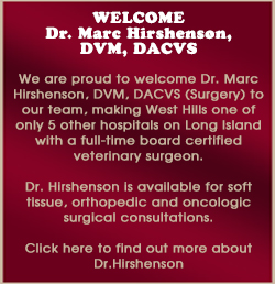 Welcome Dr. Hirshenson Image