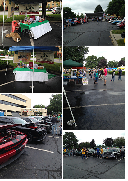 Classic Car Show supporting Last Hope Rescue at Bethpage Federal Credit Union